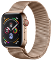 Apple Watch GPS Cellular 40mm Gold Stainless Steel Case with Gold Milanese Loop MTVQ2